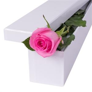 1-fir-de-trandafir-roz-in-cutie-K99fV