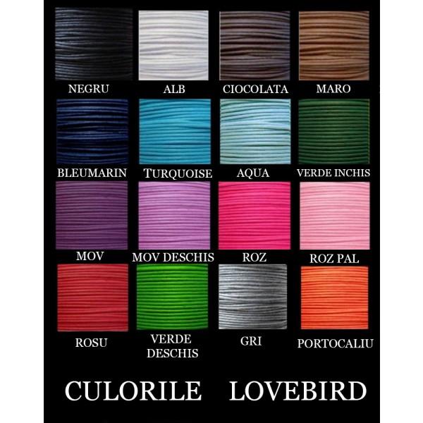 culorile_lovebird_2_1_4_1_7_1